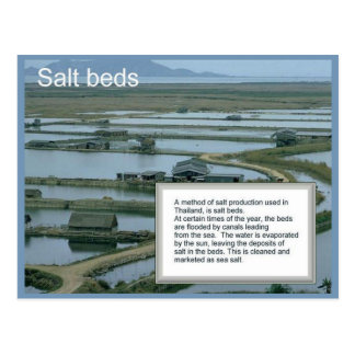 Educación, geografía, ciencia, camas de la sal postal