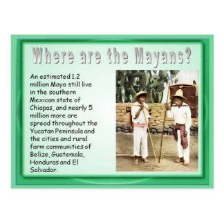 Educación, historia, Mayans ahora Postales