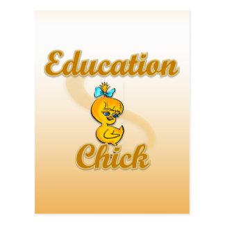 Education Chick Postcard