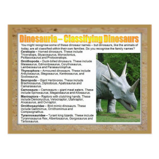 Education, Science, Classifying Dinosaurs Postcard