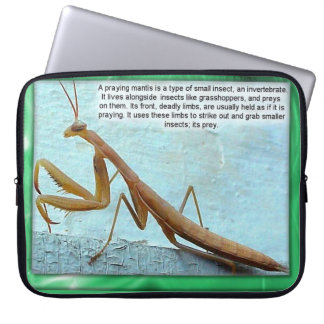 Education, Science, Insects, Praying Mantis Computer Sleeve