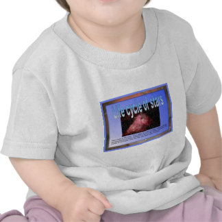 Education, Science, Life cycle of stars Shirt
