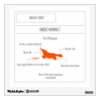 EduPaper Products Platypus Wall Decal