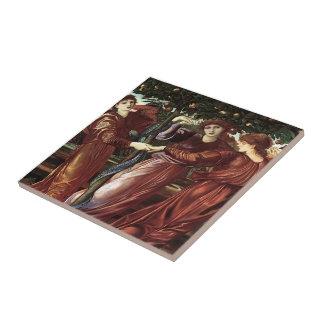 Edward Burne-Jones: El jardín del Heserides Azulejo Cuadrado Pequeño