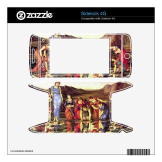 Edward Jones - The mirror of Venus Sidekick 4G Skin