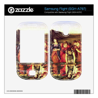Edward Jones - The mirror of Venus Samsung Flight Decal