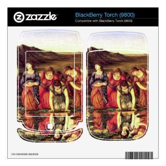 Edward Jones - The mirror of Venus Decals For BlackBerry