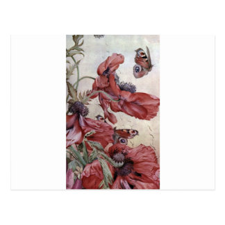 Edward Julius Detmold Poppies And Butterflies Postcard