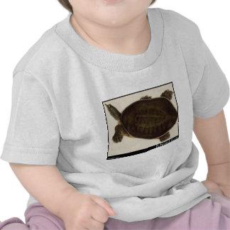 Edward Lear s Eyed Tyrse T-shirts