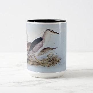 Edward Lear - The Night Herons - Bird Paintings Two-Tone Coffee Mug