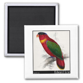 Edward Lear's Black-Capped Lory Magnet