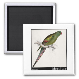 Edward Lear's Blossom-Feathered Parakeet Refrigerator Magnets