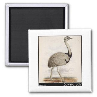 Edward Lear's Emu Magnets