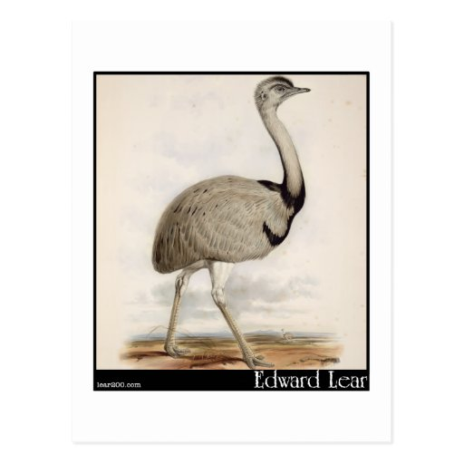 Edward Lear's Emu Post Cards