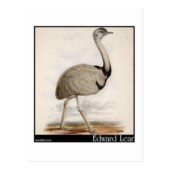 Edward Lear's Emu Postcard