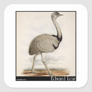 Edward Lear's Emu Square Sticker
