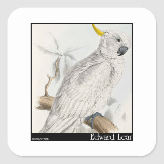 Edward Lear's Greater Sulphur-Crested Cockatoo Square Sticker