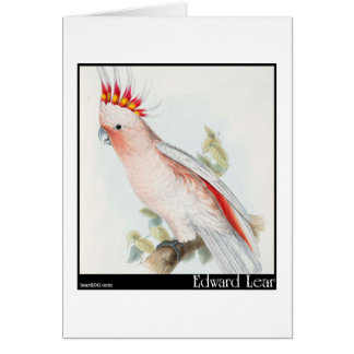 Edward Lear's Leadbeater's Cockatoo Greeting Cards