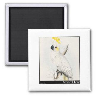 Edward Lear's Lesser Sulphur-Crested Cockatoo Magnets