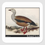 Edward Lear's Maned Goose Square Sticker
