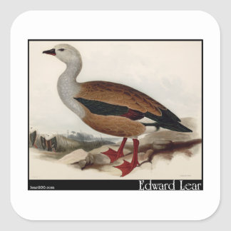Edward Lear's Maned Goose Square Sticker