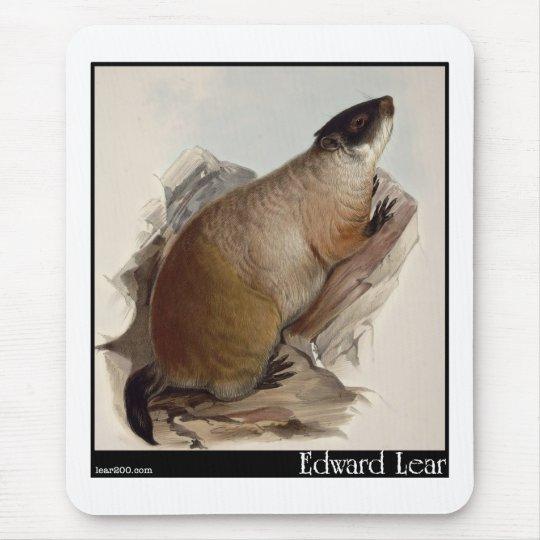 Edward Lear's Marmot Mouse Pad