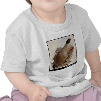 Edward Lear's Marmot T Shirts