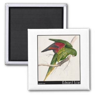Edward Lear's Maton's Parakeet Refrigerator Magnets