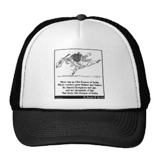 Edward Lear's Old Person of Ischia Limerick Trucker Hat