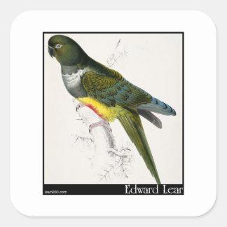 Edward Lear's Patagonian Parakeet-Macaw Square Sticker