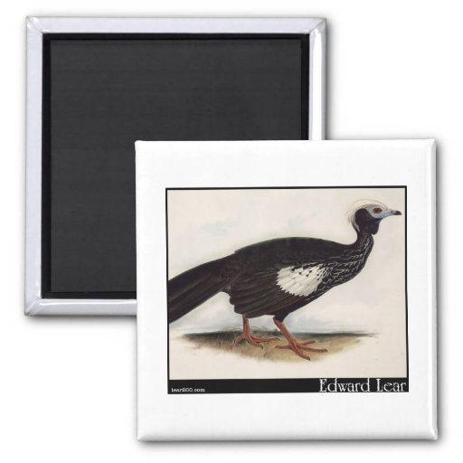 Edward Lear's Piping Guan 2 Inch Square Magnet