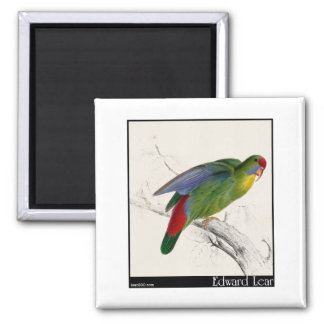Edward Lear's Red-Fronted Parakeet Refrigerator Magnet