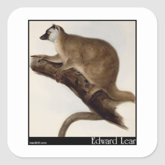 Edward Lear's Red Macauco (Red Lemur) Square Sticker