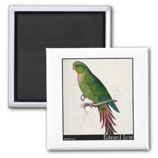 Edward Lear's Roseate Parakeet Refrigerator Magnet