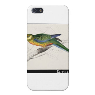 Edward Lear's Stanley Parakeet Juvenile Case For iPhone SE/5/5s