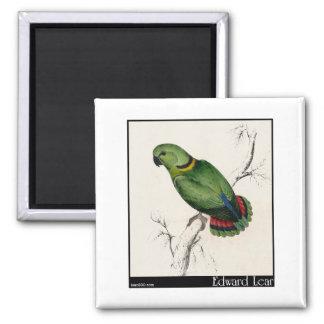 Edward Lear's Swindern's Parakeet Refrigerator Magnet