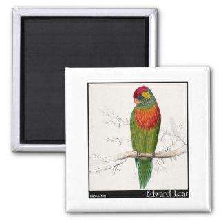 Edward Lear's Variegated Parakeet Magnets
