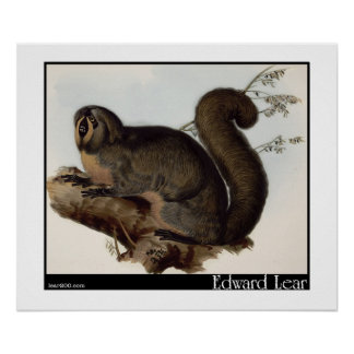 Edward Lear's Whiskered Yarke Poster