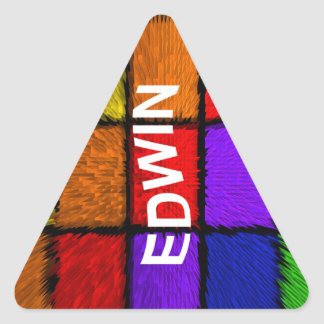 EDWIN TRIANGLE STICKER