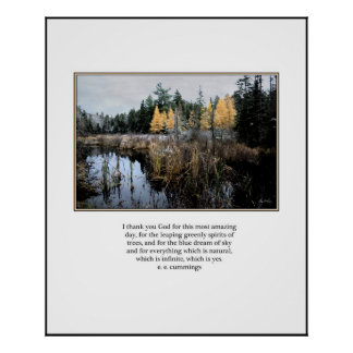 ee Cummings quote Cattails and Larches Poster