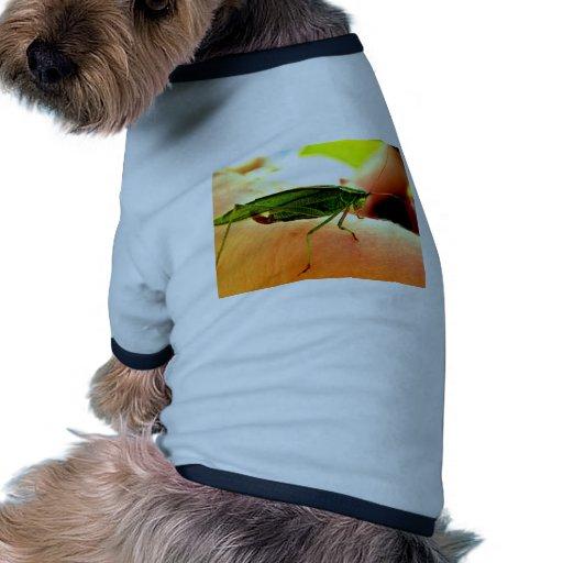 ¡Eeek!  ¡Hay un saltamontes en mi brazo! Camisetas Mascota