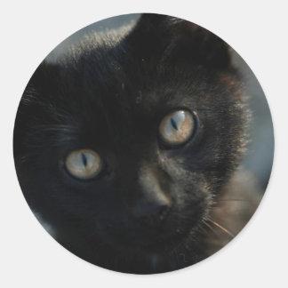 EEK Black Cat Scary Classic Round Sticker