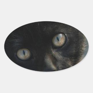 EEK Black Cat Scary Oval Sticker