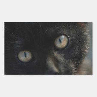 EEK Black Cat Scary Rectangular Sticker