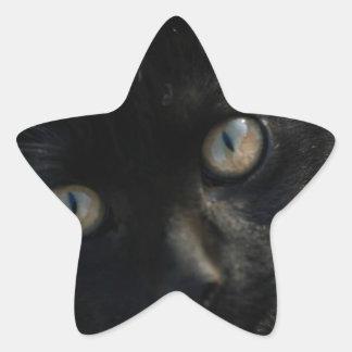 EEK Black Cat Scary Star Sticker