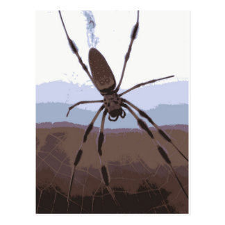 Eek! Brown spider! Postcard