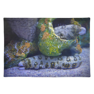 Eel in Waiting Cloth Placemat