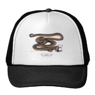 Eel, tony fernandes trucker hat