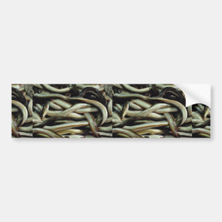 Eels Andalusia southern Spain Bumper Sticker