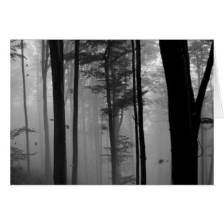 EERIE FOREST TREES LEAVES B&W CARD